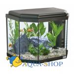Аквариум AQUATLANTIS CALYPSO, черный (001), 40х25х34 см, 27 л, LED 19 (leds)+FIL. Mini Biobox2